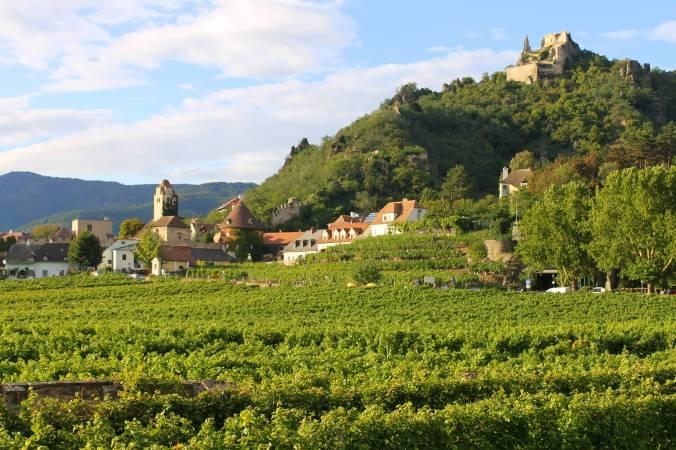 Vineyards around Durnstein.